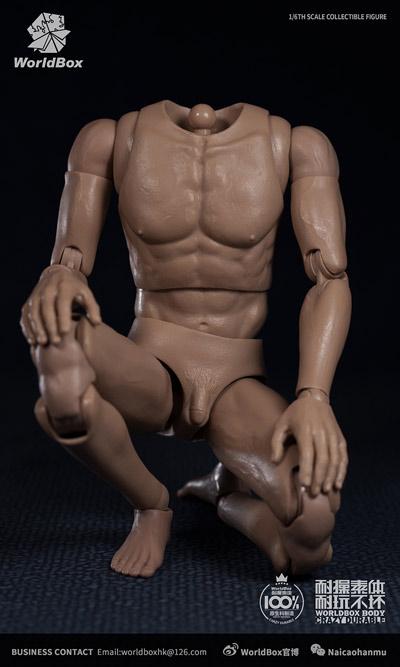 【WorldBox】AT020 1/6 Durable Body 汎用男性素体 1/6スケール 男性ボディ素体