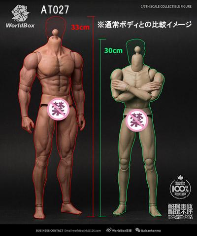 【WorldBox】AT027 1/6 Durable Body - Ripped 筋骨隆々 1/6スケール 男性ボディ素体