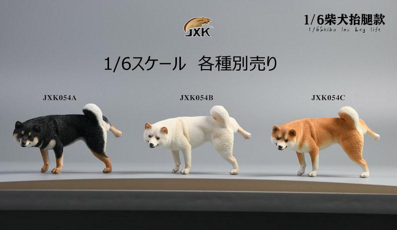 【JxK.Studio】JXK054ABC shiba inu Leg Lift 1/6スケール 柴犬 イヌ