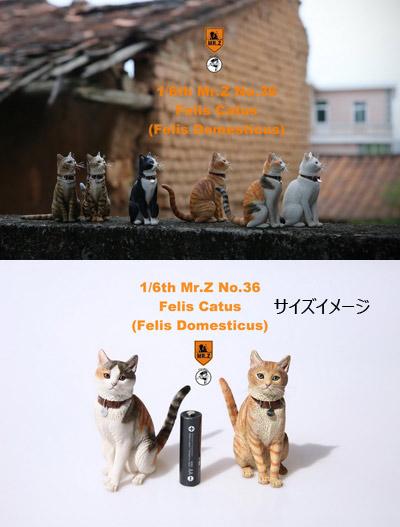 【MR.Z】MRZ036 1/6 Felis Catus 1/6スケール 猫 ネコ 家猫 イエネコ